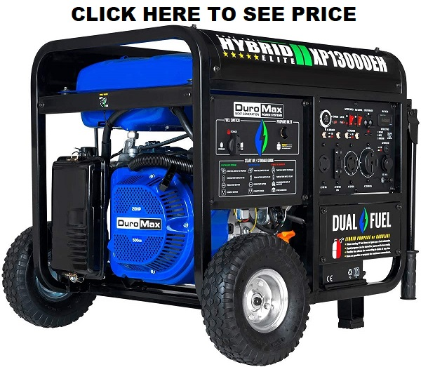 DuroMax XP13000EH Generator BlueGray